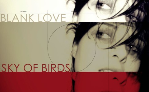 Sky of Birds_Blank Love